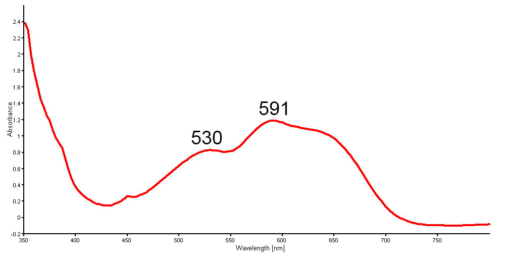 Figure 15. Non-polarized UV-Vis-NIR spectra of a new generation Tanusorn-treated sapphire showing cobalt-related absorption bands peaked at 530 and 591 nm. An additional peak at 625 nm is sometimes seen. (Spectrum: GIT)