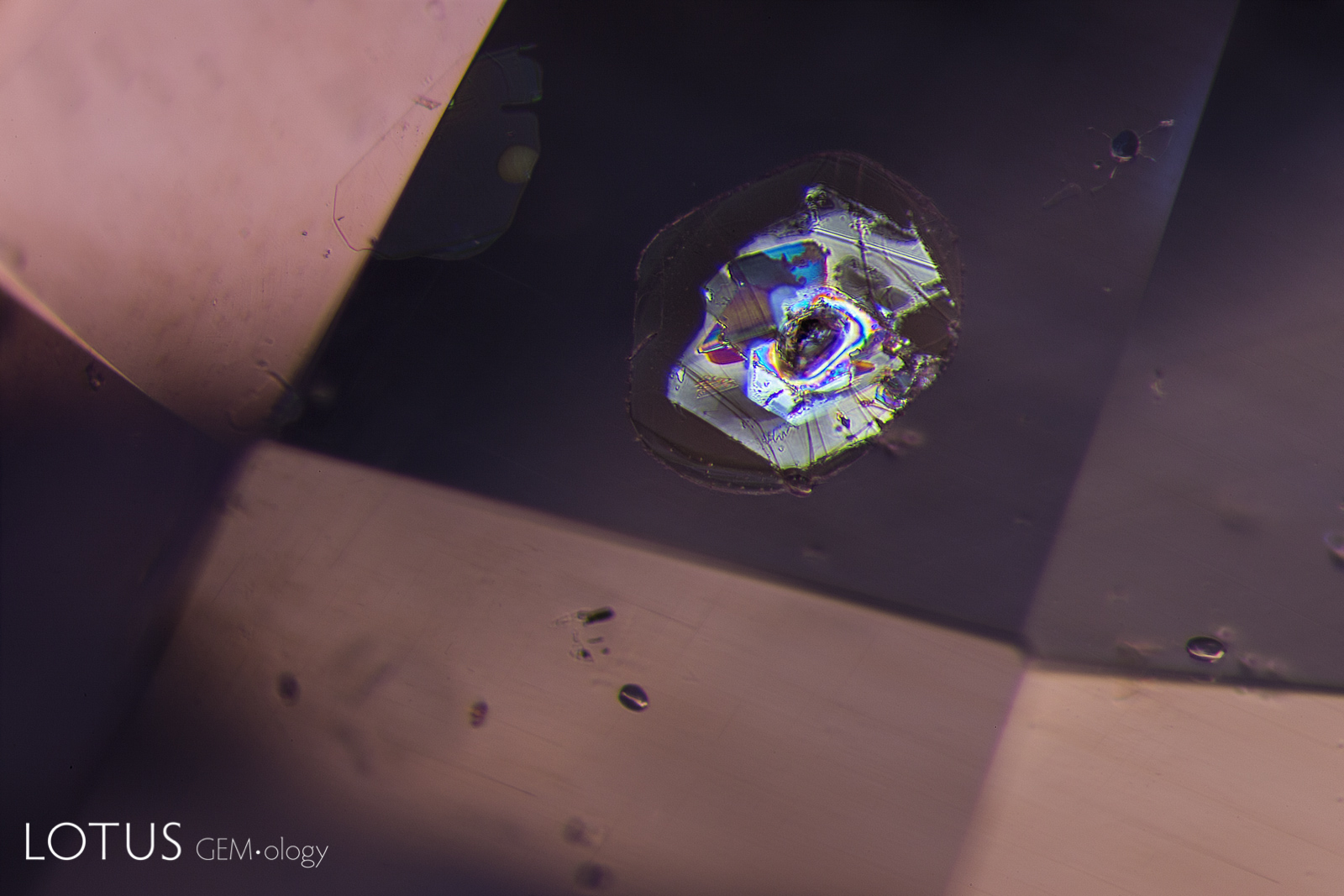A combination of dark field and overhead lighting was used to photograph the same scene as at left, revealing two large mica plates and smaller rounded zircon crystals. The undamaged state of the mica reveals that this sapphire has not been subjected to heat treatment.