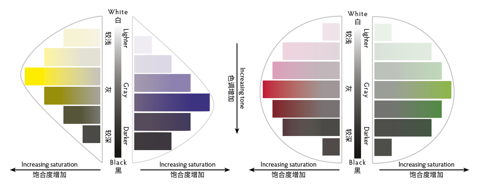 Vertical slices through the color sphere demonstrate the relationship between tone and saturation. Yellow at its highest saturation is lighter in tone than violet, while the highest saturations of red and green are equal in tone.
