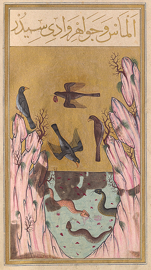 An Oriental miniature dated 1582, representing the Valley of Serpents, guarded by snakes. Eagles carry in their beaks pieces of meat in which diamonds are embedded, illustrating an Indian legend that appears in the tale of Sinbad the Sailor in the Thousand and One Arabian Nights. Photo and document courtesy of the Bibliothèque Nationale, Paris.