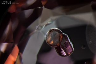 Apatite is a common inclusion in spinel. Here we can see it in both a more rounded and elongated form. The identity of the apatite was confirmed with Raman spectroscopy. Specimen courtesy Ayub Muhammad.