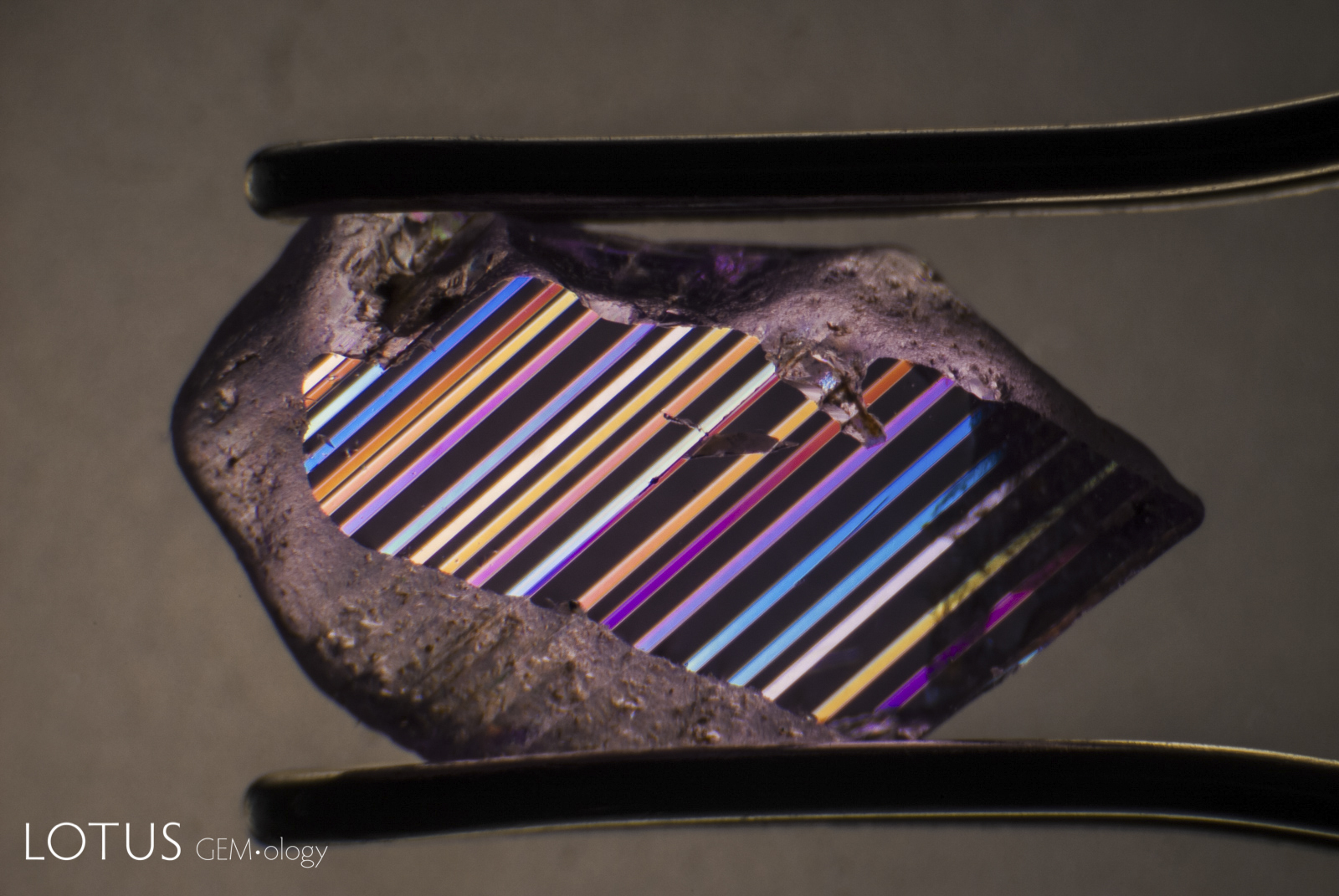 Polysynthetic twinning in a pink sapphire from Ilakaka, Madagascar in polarized light. Photo: Richard W. Hughes