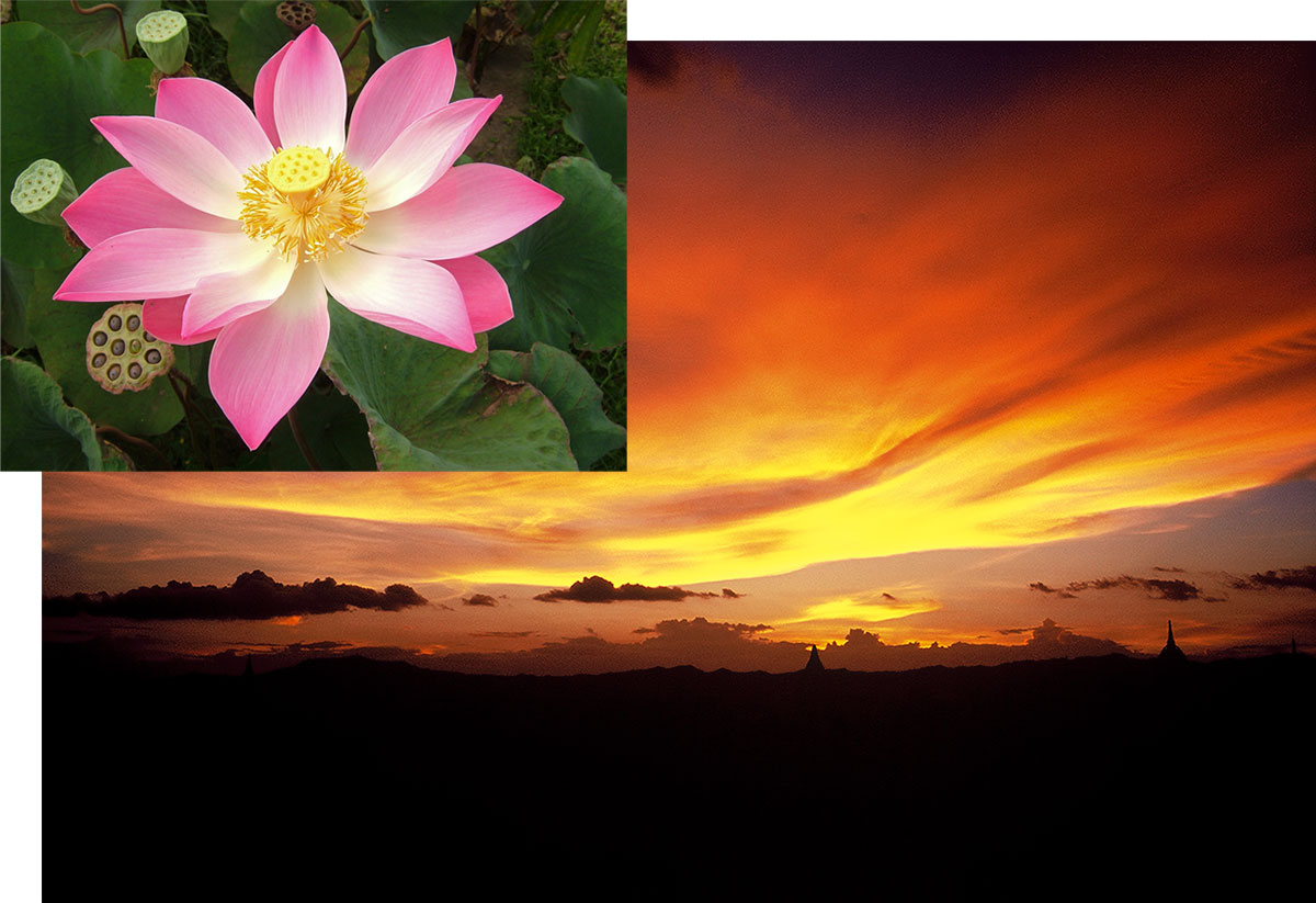 Figure 13. The variety of nature With both lotus flowers and sunsets, there is a range of possibilities. Since padparadscha is defined by these colors, thus it seems logical that padparadscha might also cover a range of possibilities. Sunset photo at Bagan, Myanmar: Richard W. Hughes; lotus photo: iStockphoto.com