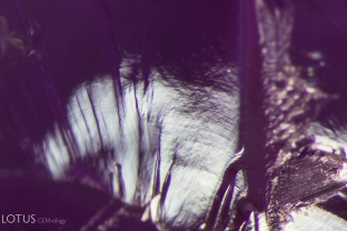With magnification, curved straie can be seen in this piece of Verneuil flame-fusion synthetic sapphire that was masquerading as a piece of natural rough.