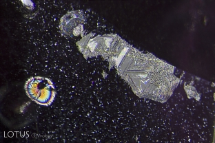 A heat-altered crystal with an iridescent decrepitation halo, alongside a surface cavity filled with glass.
