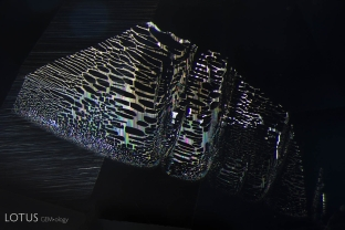 Fingerprint in untreated Mogok sapphire; note the vertical striations visible on the liquid channels; FOV 4 mm