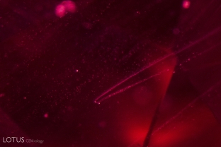 """""""Hairpin"""" or """"comet"""" -type flux inclusions in a Kashan flux-grown synthetic ruby. They are compposed of a larger flux droplet and smaller flux particles forming the tails along the growth direction."""