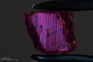 Polysynthetic twinning creates this striking striped pattern when viewed in crossed polars in this ruby from Malawi.